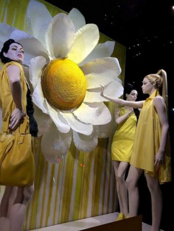 escaparate inspirado en las margaritas para la temporada de primavera y verano